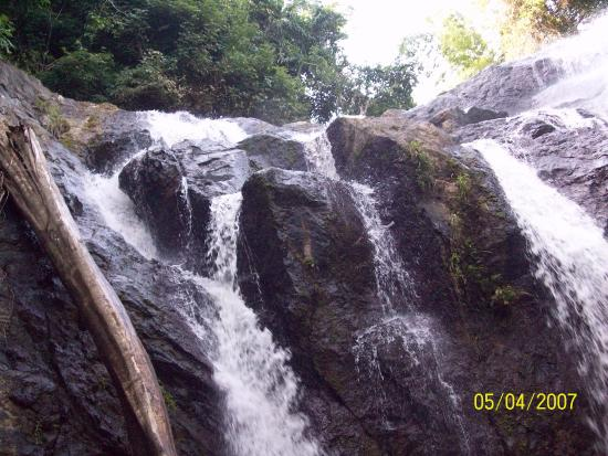 Argyle Falls Tobago Tour