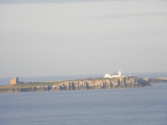Farne Islands: Close up from Bamburgh Castle
