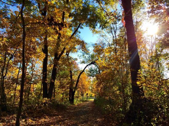 Pelham Bay Park: Hunter Island, Kazimiroff Nature Trail Bronx