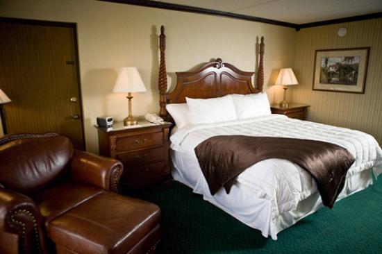 MCM Elegante Hotel: Elegante Single King