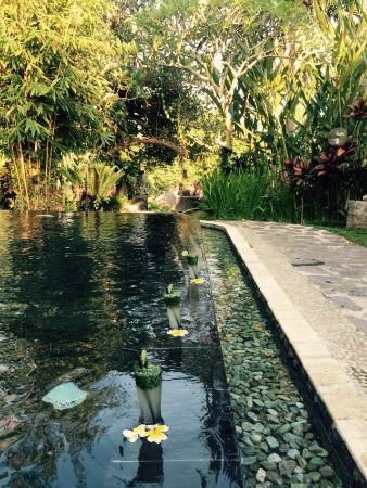 Beji Ubud Resort: photo2.jpg