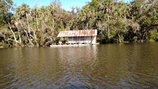 Capt. Gill's River Cruises: Apalachicola River cruise with Capt Gill