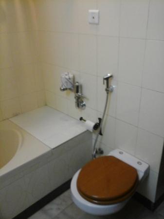 Hotel Meghniwas: WC