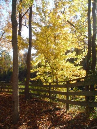 South Mills, North Carolina: Nature trails