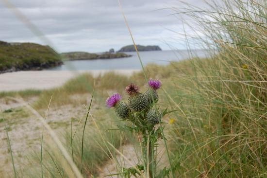 Great Bernera, UK: Bosta beach