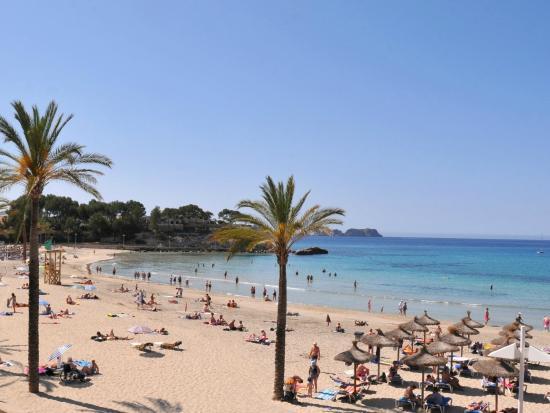 Mallorca Karte Paguera.Allsun Hotel Paguera Park Bewertungen Fotos Preisvergleich