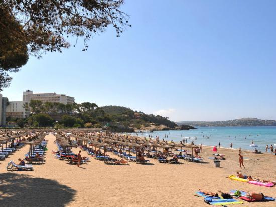Allsun Hotel Paguera Park Bewertungen Fotos Preisvergleich