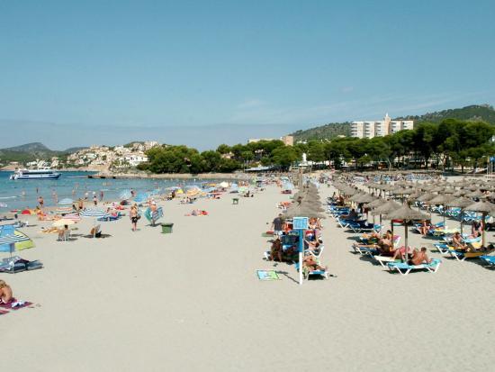 Mallorca Hotel Paguera Beach Bewertungen