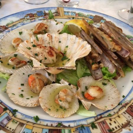 Seafood Appetizer Picture Of Al Gatto Nero Da Ruggero Burano