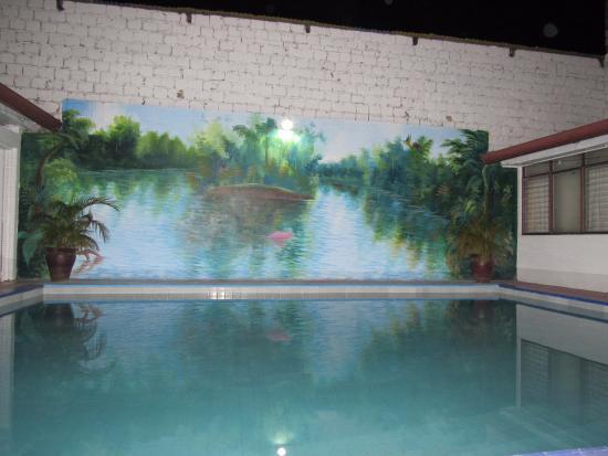 Hospedaje Golondrinas : La piscina !!!