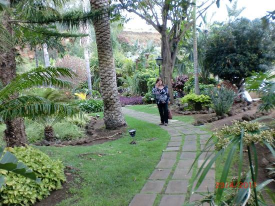 Der Weg ist das Ziel - Picture of Botanical Gardens (Jardin Botanico), Puerto...