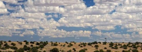 Snowflake, Arizona: Area Skies