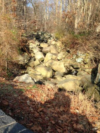 Alapocas Run State Park: Rock bed you can climb up on