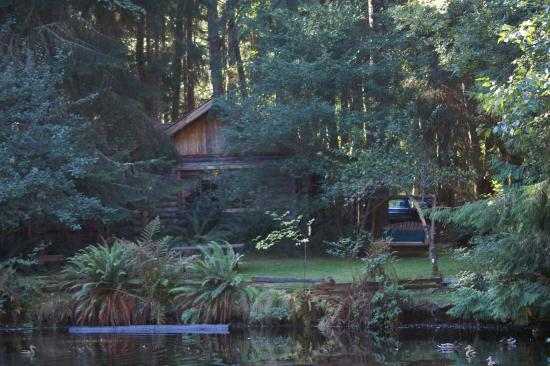 Guest House Log Cottages: The pond and cottage