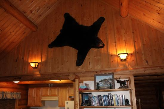 Tustumena Ridge Cabins: Bear Cabin Living Room