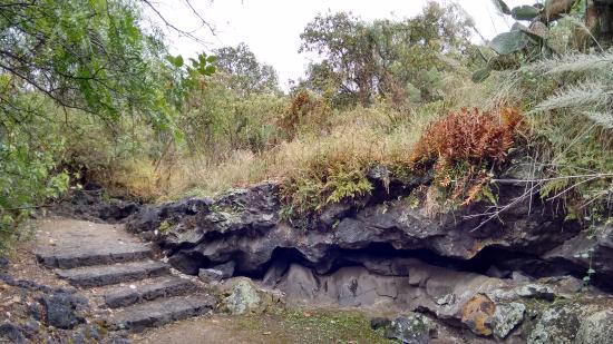 Cuicuilco: Экологический парк