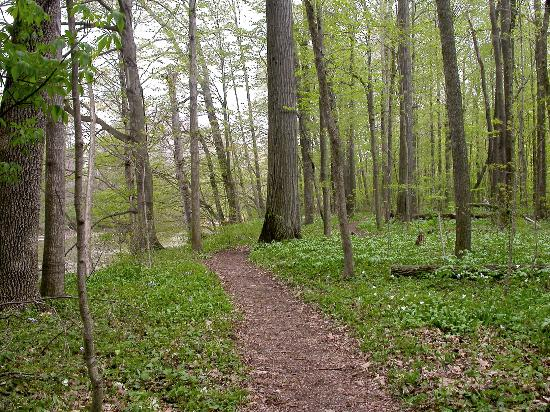 Tiffin, OH: Path through Collier Park, Seneca County, Ohio