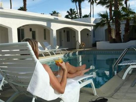 POSH Palm Springs Inn: Lounging Poolside