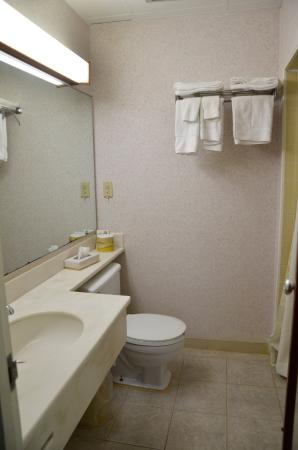 Chambersburg Travelodge: Bathroom