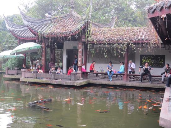 Chengdu Renmin Park : Peaceful setting