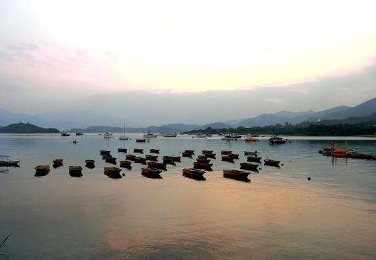 Tai Mei Tuk Town
