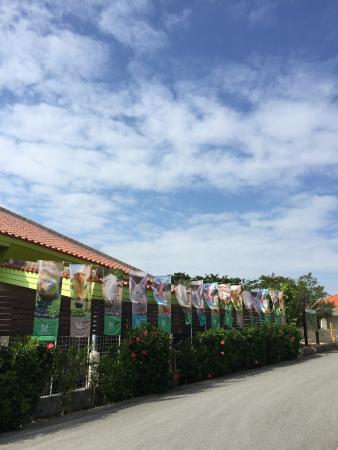 Uchina Farm