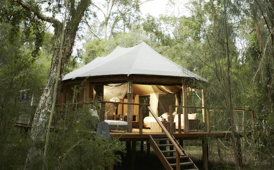 Paperbark Camp: King Deluxe Safari tent accommodates up to 6 people sharing