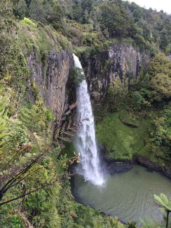 Whangamata, Nueva Zelanda: Kiwi Dundee Adventures