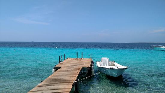 Rediscovered Bonaire