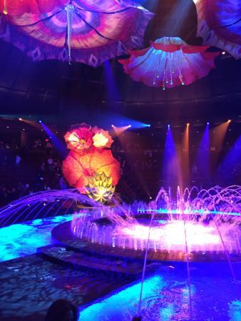 Pre show staging - Picture of Le Reve - The Dream, Las Vegas ...