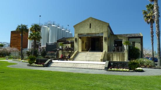 Watea Lodge: One of the wineries