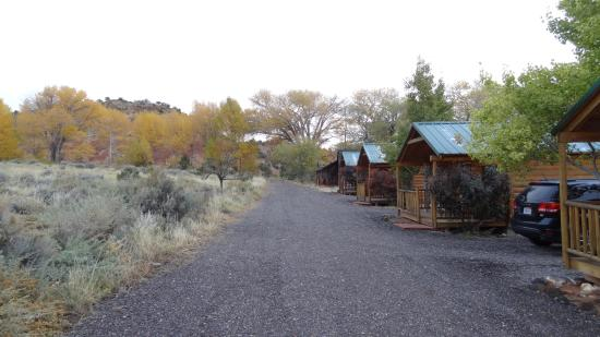 Cowboy Homestead Cabins: front view