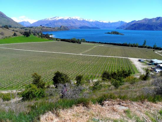 Beacon Point Walk: view from the winery