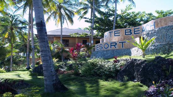 Anda White Beach Resort: garden