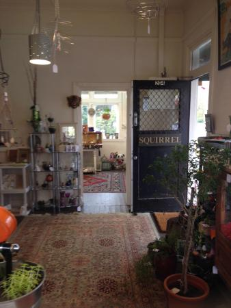 Blackheath, Австралия: Squirrel_shop an eclectic mix of gifts and art
