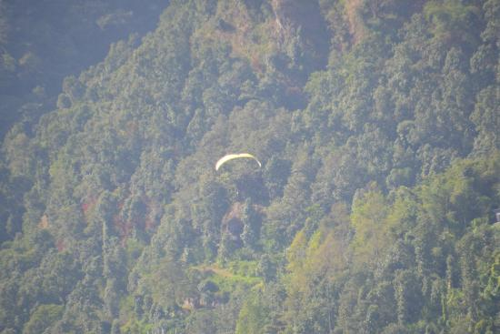 Sai Residency: View of para gliding from the room.