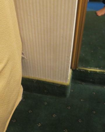 โรงแรมแอสโทเรีย การ์เด้น: Room Wall/Baseboards