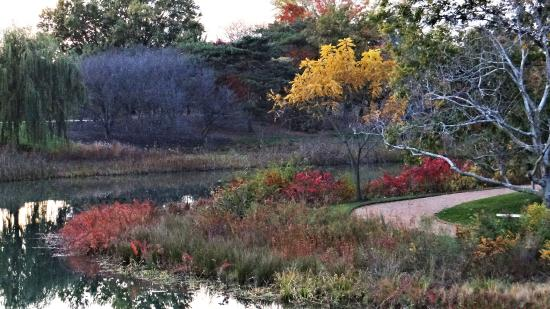 Chicago Botanic Garden Late October Picture Of Chicago Botanic Garden Glencoe Tripadvisor