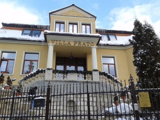 Villa Prato: entrance