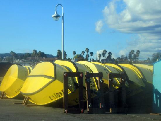 Santa Cruz Boat Rentals