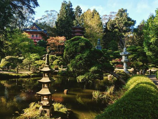 Japanese tea garden picture of japanese tea garden san for Japanese tea garden hours