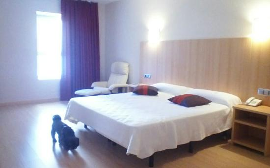 Hotel del Vino: doggy friendly hotel