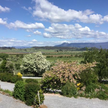 Mole Creek Cabins : View from the cabin verandah across grounds and Meander Valley