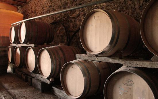 Domaine Du Vieux Chai: la cave d'élevage