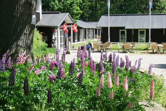 Skaelskoer, Dinamarca: Sommer