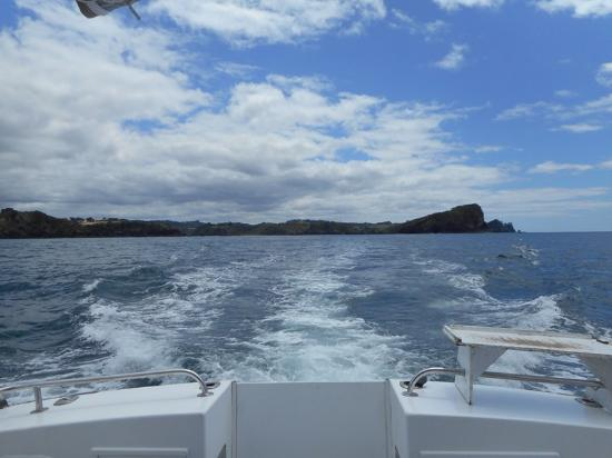 Quality Hotel Oceans Tutukaka: Вид на берег