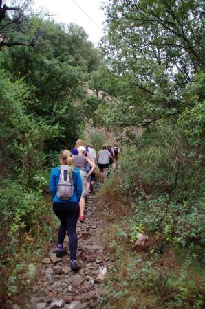 Roquebrun, Γαλλία: Sentez la garrigue