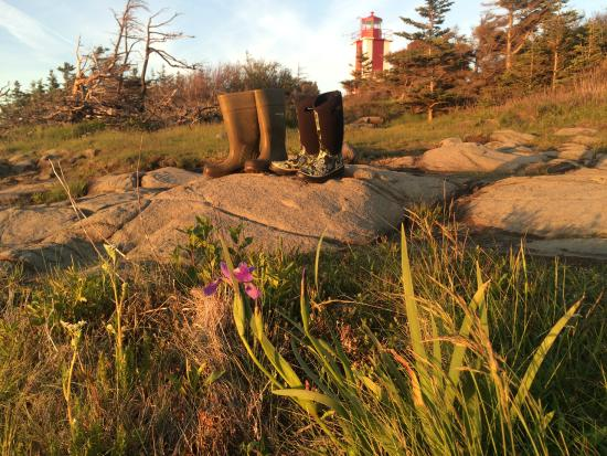 Smith's Cove, Kanada: Rubber boot terrain