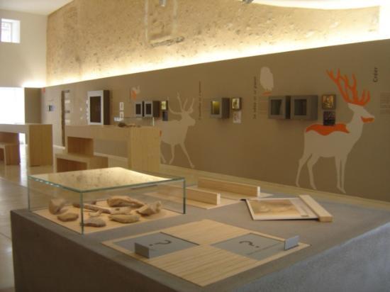 La Sabline Musee de Préhistoire