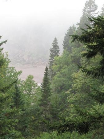 St. Martins, Canadá: view through the mist